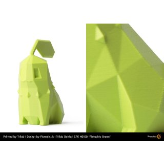 Fillamentum CPE HG100 Pistachio Green - 1.75mm - 750g Filament
